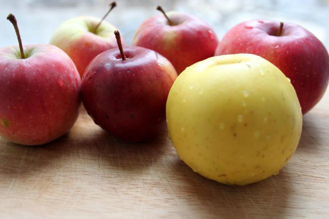 Урожай яблок