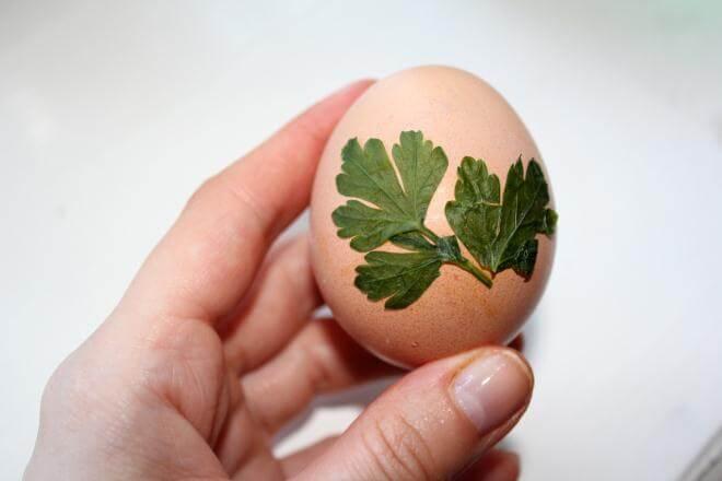 Листик петрушки наложить на яйцо