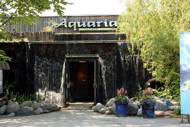 Водный музей «Аквариа»
